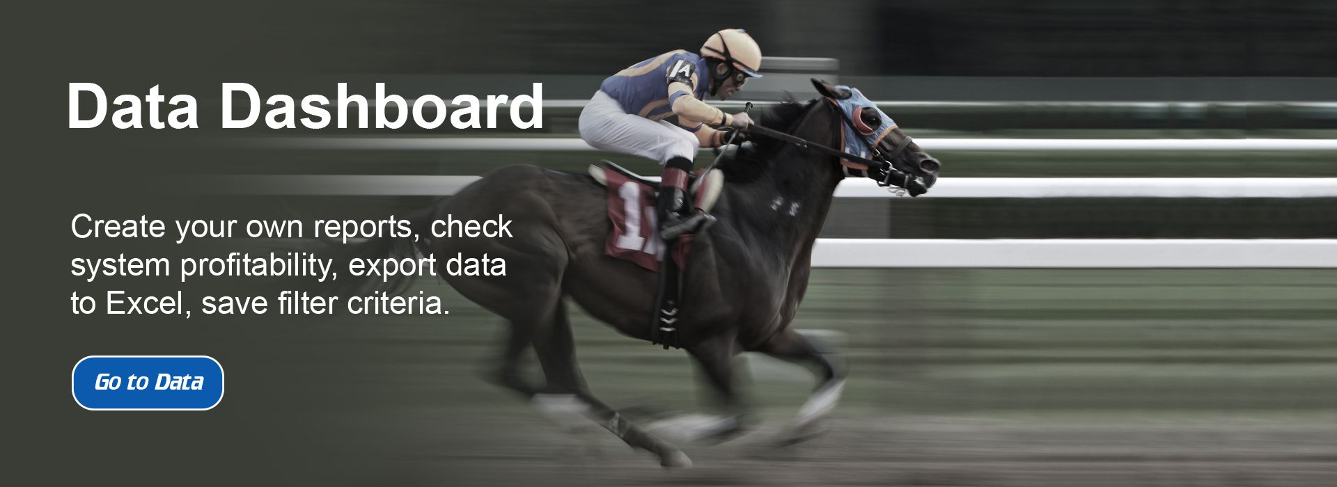 Horse Racing Bet Data - Slide Two