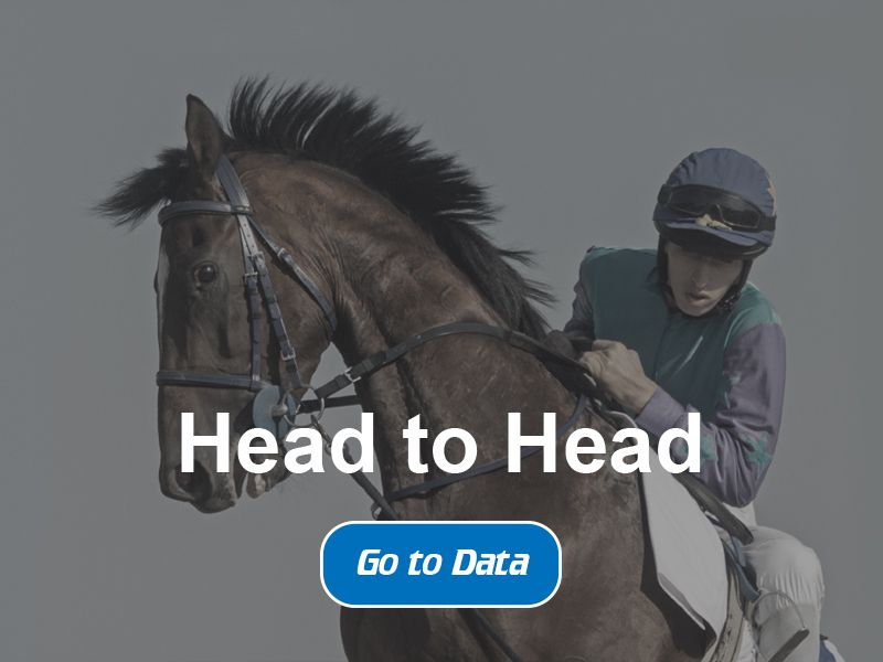 Horse Racing Bet Data - Mobile Slide Five