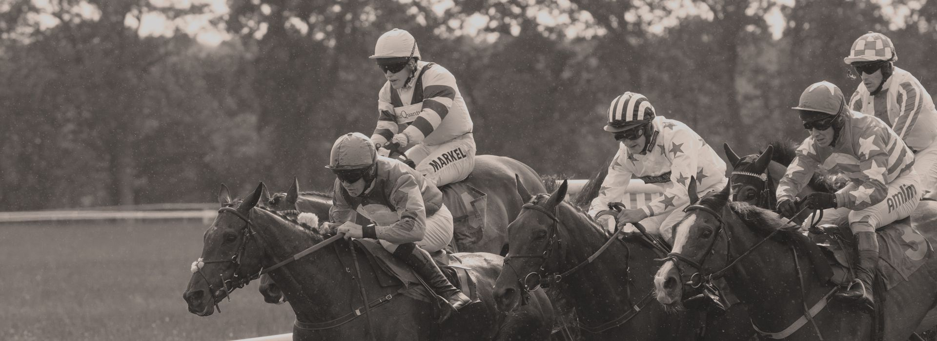 Horse Racing Bet Data and Odds   Historical Racing Results   Create