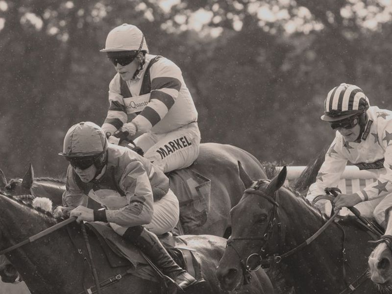 Horse Racing Bet Data and Odds | Historical Racing Results
