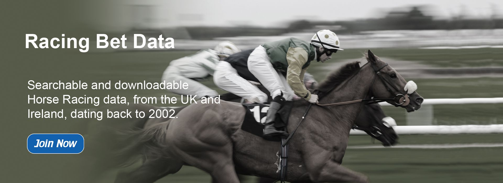 Horse Racing Bet Data - Slide One